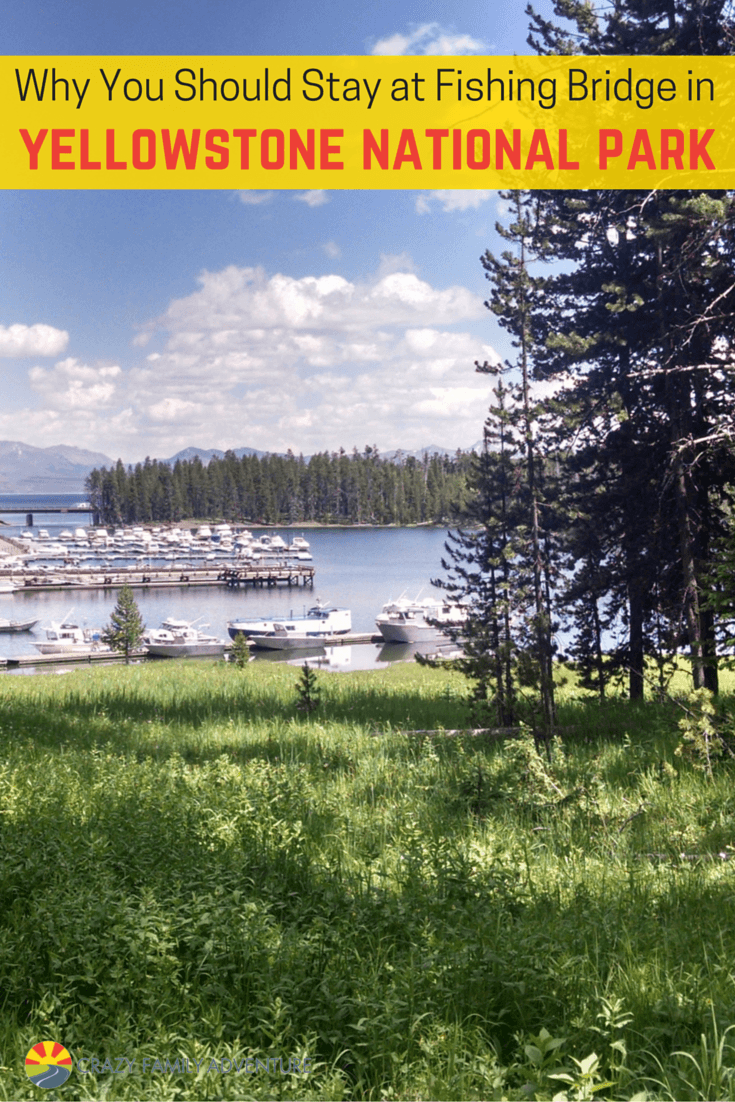 Why you should stay at fishing bridge in yellowstone for Yellowstone national park fishing