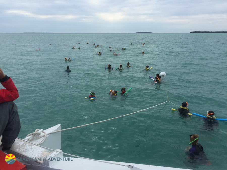 The 4 best water activities in key west with kids crazy for Key west fish and chicken