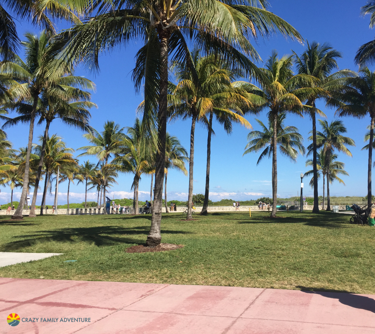 7 Things To Do In Miami With Kids - Crazy Family Adventure